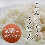 udon-1000